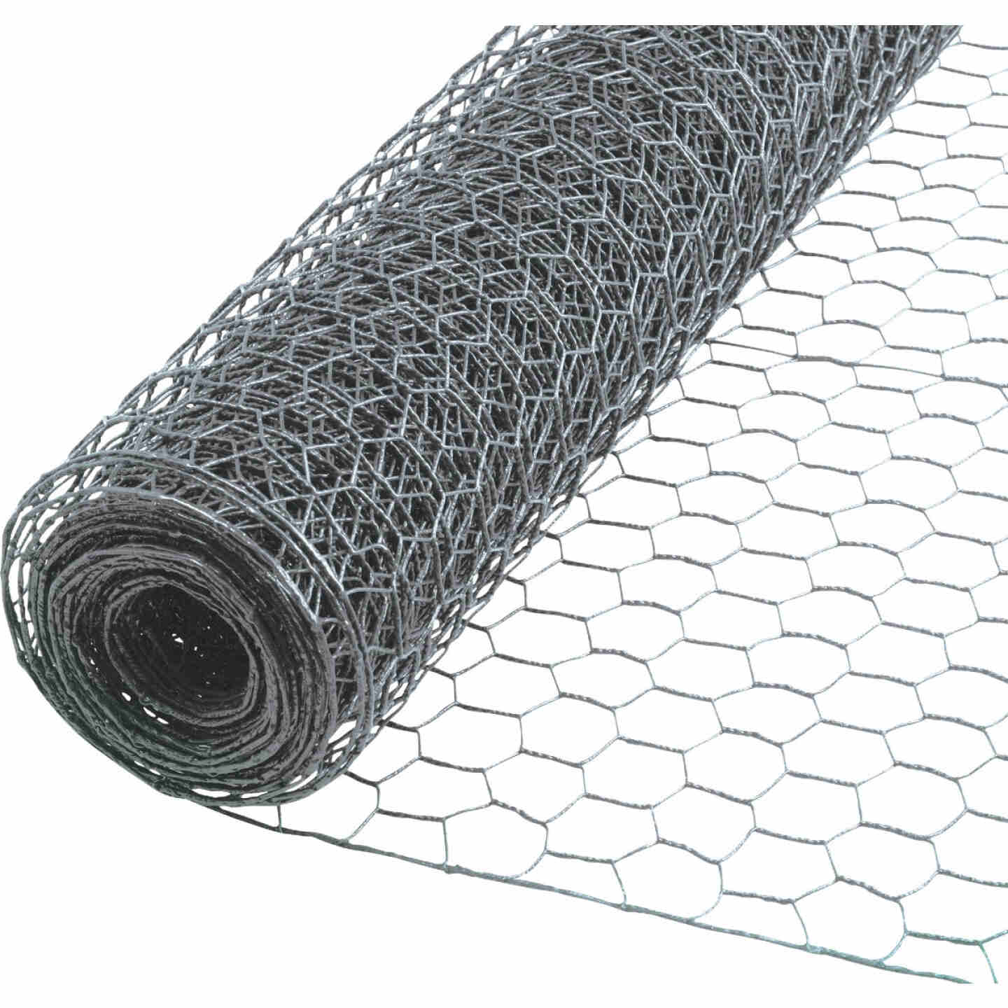 Do it 2 In. x 48 In. H. x 50 Ft. L. Hexagonal Wire Poultry Netting Image 1